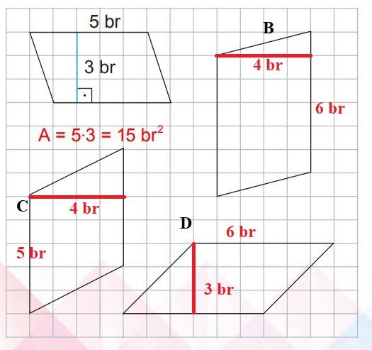 6. Sınıf Matematik Ders Kitabı Çözümleri ve Cevapları Sayfa 295-2 MEB Yayınları
