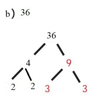 6. Sınıf Matematik Ders Kitabı Çözümleri ve Cevapları Sayfa 66-1-b MEB Yayınları