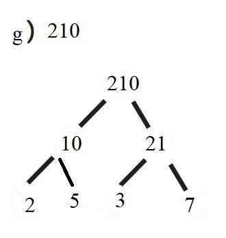 6. Sınıf Matematik Ders Kitabı Çözümleri ve Cevapları Sayfa 66-1-g MEB Yayınları