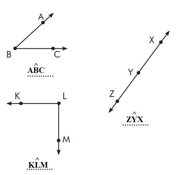 6. Sınıf Matematik Ders Kitabı Çözümleri ve Cevapları Sayfa 162-4 MEB Yayınları