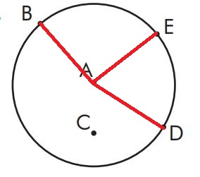6. Sınıf Matematik Ders Kitabı Çözümleri ve Cevapları Sayfa 203-2 MEB Yayınları