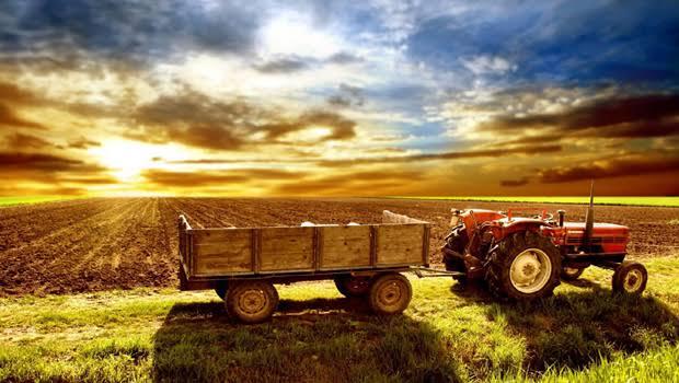 Tarım ve hayvancılık yapılan geniş arazi